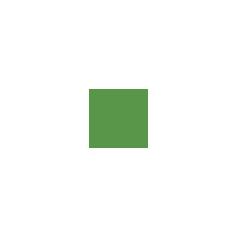 LISO BRILLO VERDE 1.30x1m