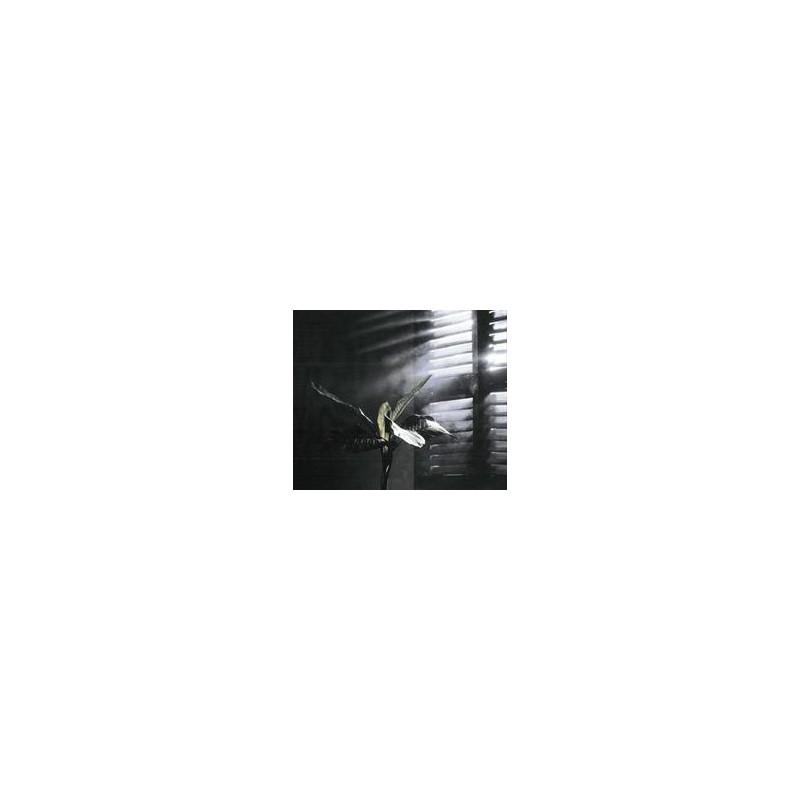 SMOKY - NIEBLA Spray efecto difusion de luz 400cc