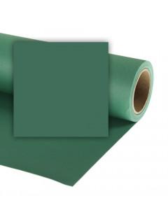 FONDO CARTULINA SPRUCE GREEN